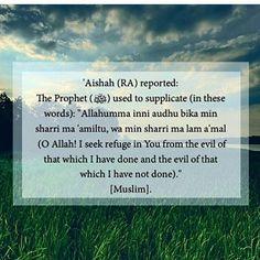 Aamiin ya Rabbal Alamiin    #mydestiny2011❤ #islam#reminders #makkah #madinah #kualalumpur #islamicpost #muslim #believers #jannah #prayers #sadaqah #instagood # #merciful #Allah  #forgiveness #repent #istighfar #subhanAllah #AllahuAkbar  #charity #dawah #me#love #quran#dhikr#reminderbenefitsthebeliever