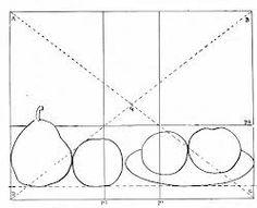 Afbeeldingsresultaat voor gulde snede tekenen