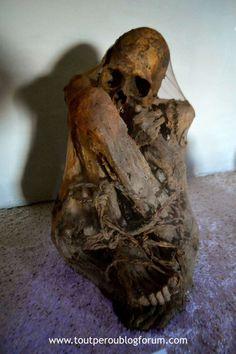Momie Lac Titicaca, Lion Sculpture, Statue, Art, Art Background, Kunst, Performing Arts, Sculptures, Sculpture