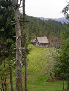 De strajă - Apuseni Mountains, Transylvania, Romania