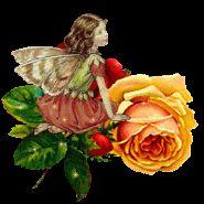 Hada y rosa