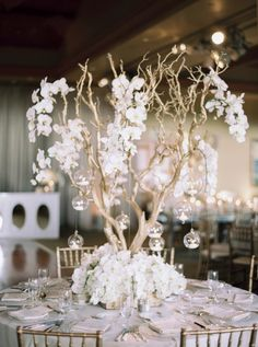 California Wedding Blooming with White Orchids - MODwedding - wedding centerpiece idea; Orchid Centerpieces, Simple Wedding Centerpieces, Wedding Decorations, Manzanita Tree Centerpieces, Centerpiece Flowers, Centerpiece Ideas, Manzanita Wedding, Orchid Wedding Theme, Floral Wedding