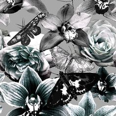 Wondrous Nature Moths, Roses and Orchids