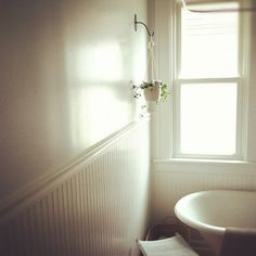 Ensuite plant on hook. - need to replace hook Bathroom Plants, Boho Bathroom, Laundry In Bathroom, Downstairs Bathroom, Bathroom Renos, Small Bathroom, Bathroom Art, Bathroom Ideas, Indoor Hanging Baskets