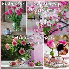 Good Morning Cards, Beautiful Pink Roses, Good Night, Table Decorations, Photos, Gifts, Nighty Night, Pictures, Presents