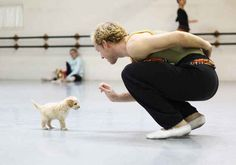 Gaston is great at doing tricks... | There's An Adorable New Puppy At The City Ballet Of San Diego