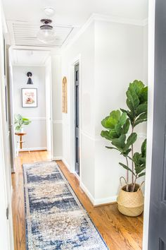 6 Tips to Decorate a Boring Hallway | blesserhouse.com - light gray painted hallway with black doors, runner rug, new lighting, and plants.