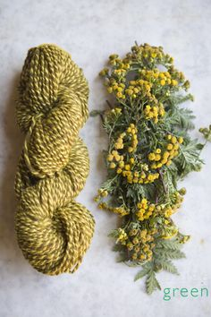 Yummy natural plant dyed yarn tansy - This Ivy House. Shibori, Fabric Yarn, How To Dye Fabric, Natural Dye Fabric, Natural Dyeing, Textiles, Spinning Yarn, Fibres, Hand Dyed Yarn