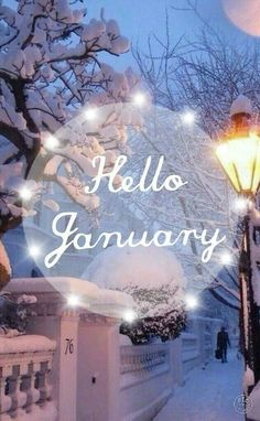 Hello January Images To Welcome The New Month Seasons Months, Days And Months, Months In A Year, 12 Months, January Pictures, January Images, January Wallpaper, Calendar Wallpaper, Christmas In July
