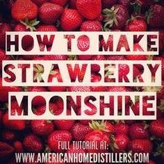 Prep Time: 1 hour Cook Time: 3 hours Batch Size: 5 gallons of mash, gallons of wash Yield: 1 gallon of 100 proof spirit quart of 100 proof hearts) Taste: Delicious Moonshine Mash Recipe, Strawberry Moonshine Recipe, Homemade Moonshine, How To Make Moonshine, Moonshine Still, Apple Pie Moonshine, Strawberry Wine, Raspberry, Homemade Alcohol