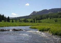Tailwater Fly Fishing in Central Colorado