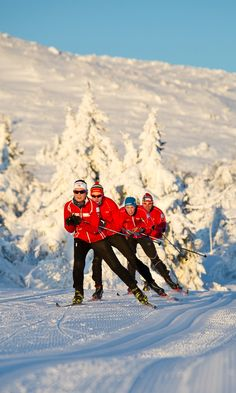 Nordic skiing began about 8,000 years ago in Scandinavia but it's taken until now for the sport to start really catching on in the U.S.