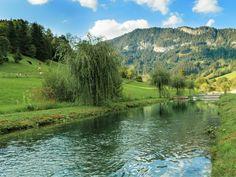Declevas's Alpenfisch Mariazell: Bio-Forellen und Saiblinge kaufen. River, Mountains, Nature, Outdoor, Fish Farming, Trout, Alps, Fish, Outdoors