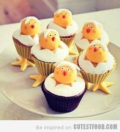 Hatched Cupcakes