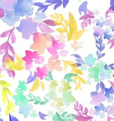 Colorfloral by Charis Harrison, via Behance