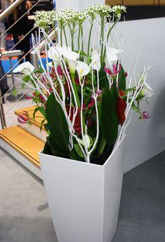 floral art h ngende deko mit orchidee und holz gearbeitet floristik aus hamburg orchideen. Black Bedroom Furniture Sets. Home Design Ideas