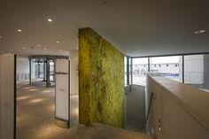 Felt wall by Claudy Jongstra @Higor Bendas Public Library Amsterdam (NL)
