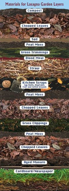 Hometalk :: Lasagna Composting: Jump-Start Your Garden With Ease!