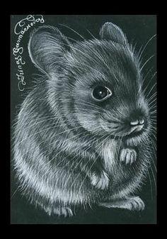Irina Garmashova-Cawton - Artiste Peintre Animalier - Spécialiste des Peintures et Portraits Félins - Noir & Blanc - Rat