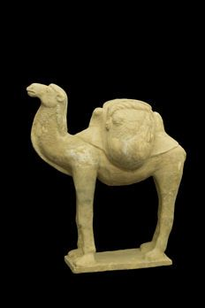 Chinese Sui Camel with TL Test - 35,00 x 27,00 x 17,00 cm