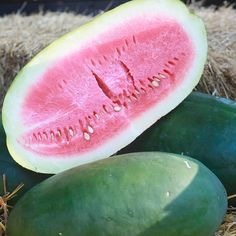 Grow Heirloom Watermelons - Kleckly Sweet Watermelon Seeds:Bred and developed in Georgia in the 1880s by W. A. Kleckly of Sumpter County, Kleckly Sweet Watermelon continues to be an American favorite to this day.  The skin on this watermelon is so thin that travel is difficult so you are likely to only find this one if you grow it yourself.  Very sweet, dark red flesh.