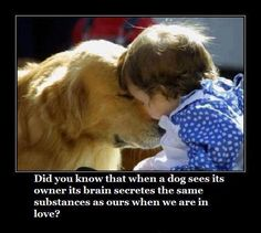 my heart just melted a little <3