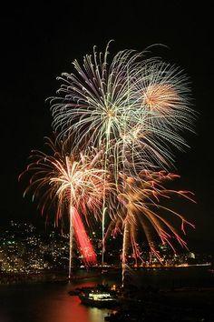 熱海海上花火大会。(静岡県熱海市・2005年5月):FinePix S3 Pro 17-55mmF2.8 ISO100 F16 Bulb(約41秒 ※遮光紙で途中露光中断あり) Dレンジ:ワイド(WIDE2) Japanese Show, Atami, Fire Works, View Image, Crackers, Spaces, World, Modern, Flowers