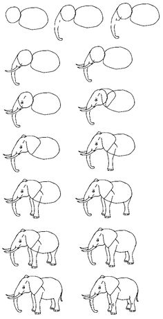 Draw an elephant. Note: This is a hybrid of the Asian and African elephant. Ears are African elephant (Asian elephant has smaller ears). Back is an arch like Asian elephant. (African elephant has a dip in the back).