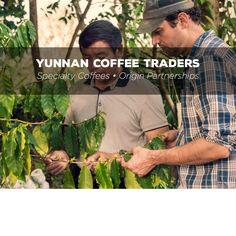 yunnancoffeetraders / SpecialtyCoffees•OriginPartnerships