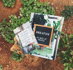 Breathe Launch! — Life Lived Beautifully• with every purchase of the study we are including this free 5x7 print!