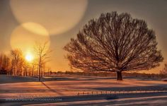 Winter has finally arrived in South Haven thank you Kapshot Photography!