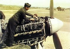 A fitter checking the ignition system of the Napier Sabre engine used by the Hawker Typhoon. These 2,200hp engines had 48 spark plugs and remained rather tempremental throughout it's service - World War 2