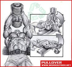 Chest Exercises - Pullover - Fitness Workouts Gym Back Shoulder - Yeah We Train !