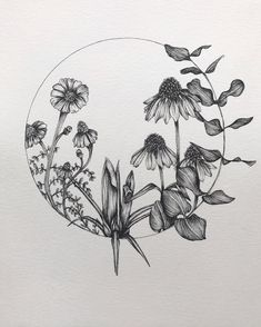 Image result for ink drawing flower circle