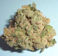 Sales of high grade Medical Marijuana (Hybrid, Sativa, Indica)| Weed for sale,Cannabis for sale Also buy Weed Online | Cannabis extracts | mostly cannabis oil, Phoenix Tears, CBD oil | With Concentrate, Hashish,Tinctures, and Cannabis Edibles http://www.marijuanaplug.com