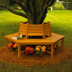 We plan to build a bench around our hickory tree as an additional seating area near the patio