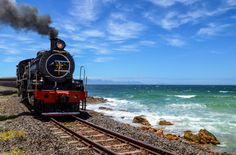 Steam locomotives in the old trains depot Stock Photo: 245111756 - Alamy Old Trains, Steam Locomotive, Train Travel, Scenery, African, Ocean, Stock Photos, Landscapes, Southern