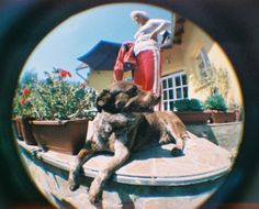 "New Fisheye Baby 110 by #Lomography. Sample color photo, I love the prospective. Taken by ""webo29"""