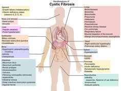 Free nursing care plan for cystic fibrosis