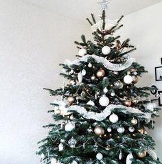 Heb jij de Kerstboom al in huis? :) Wij wel hoor!