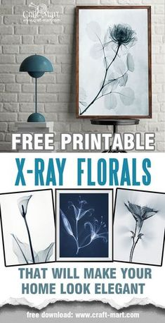 "Free printable wall art - X-ray florals and ""Aura"" photos. These are just perfect for any interior! Use them as free farmhouse printables or create a multi-panel canvas composition. Beautiful pictures of flowers - free 8""x10""download in PDF format. #printable #freeprintable #farmhousedecor #wallart"