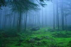17 wonderful places to visit in India