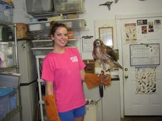 NC . birds/small animals . possible housing . no stipend . 6 wk min . certificate of completion . education