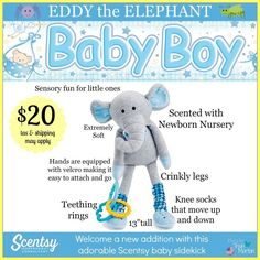 Meet Eddy the Elephany our new Sidekick, comes scented with Newborn Nursery! Order yours today at www.smellarific.com.