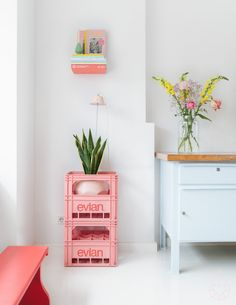 Evian bottle crates to display house plants.