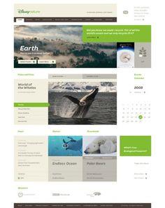 layout, web