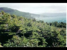 "Scenic, Ocean View Land for Sale - Rocky Harbour, Newfoundland. A wonderful opportunity to own a piece of ""The Rock""."