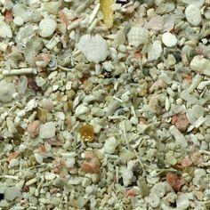 Biogenic sand from Capdepera, Majorca, Spain. — so many textures! #arenophile