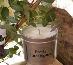 Fresh Eucalyptus with peppermint soy wax natural candles great decongestant when your feeling under the weather with a cold flu blocked sinus with an uplifting aromatic scent Fresh Eucalyptus wit Vegan Candles, Soy Wax Candles, Scented Candles, Mini Candles, Gifts For Mum, Small Gifts, Unique Gifts, Get Well Gifts, Natural Candles