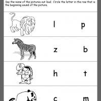 Printable Kindergarten Worksheets And Lessons Zoo Preschool Kindergarten Worksheets Printable Zoo Animals